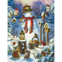 5D Diamond Painting Cross Stitch Embroidery Christmas Xmas Snowman &Bird