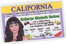 Katy Perry Superbowl Half Time Performer ROAR id card Drivers License Katey