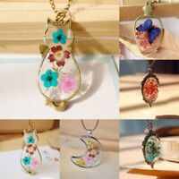 Natural Real Dried Flower Cat Butterfly Glass Pendant Necklace Women Jewelry New