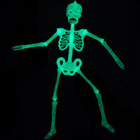 Luminous Hanging Human Skeleton Decoration Halloween Party Scary Skull Decor TR