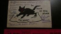 "1908 Vintage Halloween black cat ""FLU PAPER"" post card"