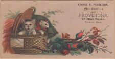 Victorian Trade Card-George Pendleton Groceries-Taunton, Ma-Kittens-Basket-Roses