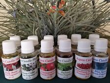Aromatherapy-HOLIDAY-Essential Oil- Diffuser /Mist - (2) 1 oz bottles for $14.95