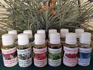 Aromatherapy-HOLIDAY-Essential Oil- Diffuser /Mist - (2) 1 oz bottles