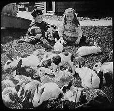 Glass Magic Lantern Slide Children With Rabbits & Puppies C1910 Photo Usa