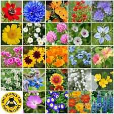 More details for wild flower / wildflower seeds - no grass - help save the uk bees! - 25g pack