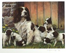"Nigel hemming ""dad's army"" spaniel chiots ltd ed sgd! taille: 42cm x 50cm neuf rare"