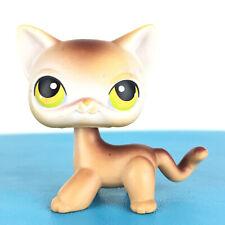 Authentic Littlest Petshop 19 Cat Short Hair Kitty Pet Shop Chat Europeen LPS