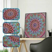 5D Diamond Painting Flower DIY Embroidery Cross Stitch Home Decor Art Kit D9V6