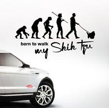 Auto Aufkleber EVOLUTION SHIH TZU born walk my Hund Hunde SIVIWONDER