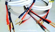 DH-LABS ODYSSEY MK2 Silver Sonic Audio Speaker Cable 2x 2.5m A Pair Terminated.