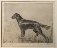 Vintage Walter E Bohl Original Etching Irish Setter Dog 44/50 Marshall Field &Co