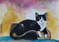 ACEO original miniature painting Acrylic Art ~ Kitty on Scratch Toy