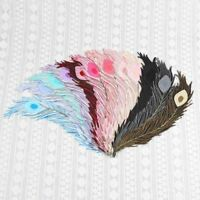 2-30Pcs Feathers Patches Embroidered Patch Sew on Iron On Applique Badge Clothes