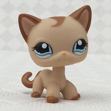 Rare LPS #1024 toys Littlest Pet Shop Caramel Short hair Cat Blue Eyes Preowned