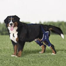 Dog Double Knee Brace – BT JUMP DUAL - cruciate ligament, luxation, Patella