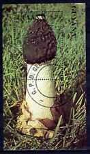 Champignons Guyane (13) bloc oblitéré