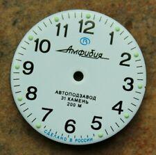 Dial To Vostok Amphibian Watch NEW 813