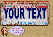 Novelty Number Plate Birthday Gift Fun American New York Licence Plate