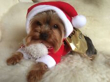 XSMALL PET SANTA COSTUME TOP