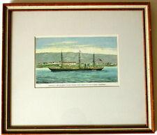 Canadian print /etching - NEWFOUNDLAND 1873 steamship EDINBURGH