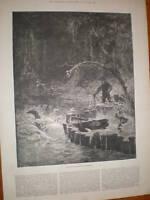 Print Catching alligators in Florida 1884