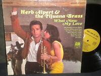 "Herb Alpert & The Tijuana Brass ""What Now My Love"" LP"