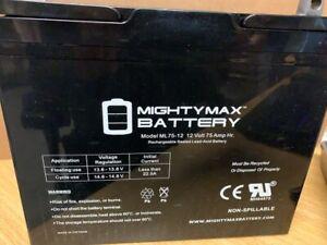 Mighty Max Battery 12 V 75 Ah Nut/Bolt Terminal Lead-Acid Battery