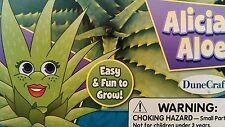 New DuneCraft Alicia Aloe Mini Dome Garden cleans the air ages 4+ made in USA