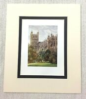 1906 Antico Stampa Exeter Cathedral Vista Palazzo Giardini Inglese Architettura