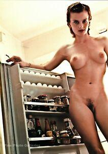 1987 Vintage HELMUT NEWTON Kitchen Female Nude And Refrigerator Photo Art 16X20