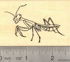 Praying Mantis Rubber Stamp Insect, Bug, Garden H14506 Wm