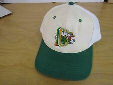 Vintage Ducks Oregon Baseball Hat Richardson Pro Players Cap 510 Large Snapback