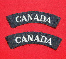 R.C.A.F. -CANADA-Grey on Blue shoulder flashes