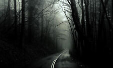 Framed Print - Highway through a Gothic Forest (Spooky Ghostly Picture Poster)
