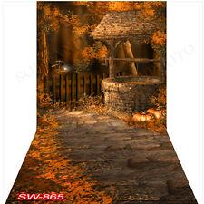 Halloween10'x20'Computer/Digital Vinyl Scenic Photo Backdrop Background SW865B88