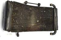 Cagiva Mito 125 8P ´91 - Kühler Wasserkühler