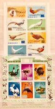 * BIRDS ORNITOLOGIA 2 Souvenir MINI FOGLI TEMATICA 01060518 *