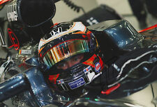 "Stoffel Vandoorne ""McLaren 2016"" Autogramm signed 20x30 cm Bild"
