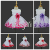 Baby Petals Flower Girl's Birthday Pageant Wedding Bridesmaid Party Tulle Dress