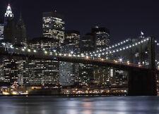 Carta Da Parati Murale Brooklyn Ponte New York City 254x183cm URBAN WAL ART
