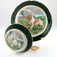 Regency English Setter Dog Pheasant Tea Green Cup Saucer Bone China England L029