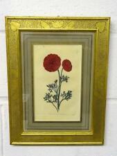Antique Botanical Print, Hand Coloured Engraving, Sidney Watts, London, 1820's