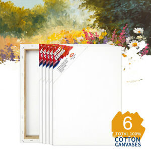 6Pack Artist Blank Canvas Panels Art Board Plain Painting Stretched Wood Framed
