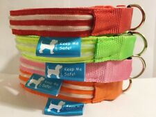 The Best Illuminated Night Time Safety Collar Dog Pet Pup USB Rechargeable BOGO
