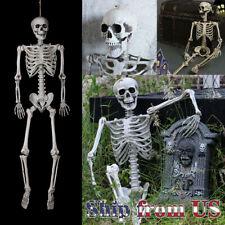 Oversize Poseable Life Size Human Skeleton Skull Halloween Decoration Party Prop