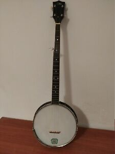 Banjo Marca Rover 5-corde + case (Usato)