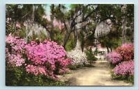 Summerville, SC - EARLY 1900s HAND COLORED POSTERN HOUSE VIEW - POSTCARD