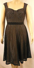 City Chic Black Beige Lace Sleeveless Empire A-Line Dress Size XS 14 BNWOT CC111