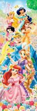 950 Piece Jigsaw Puzzle Disney Flower Garden Princess (34 x 102 cm)
